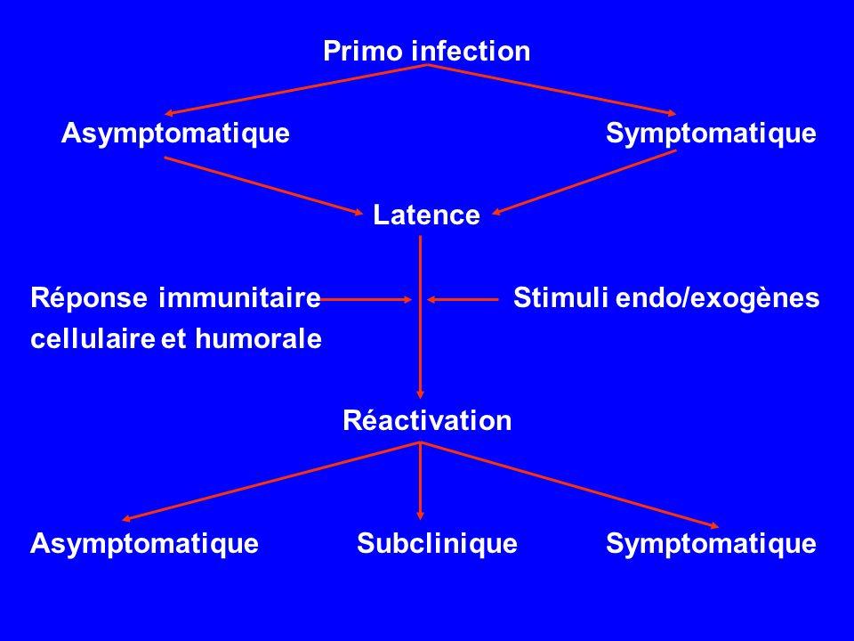Primo infection Asymptomatique Symptomatique Latence Réponse immunitaire Stimuli endo/exogènes cellulaire et humorale Réactivation Asymptomatique Subc