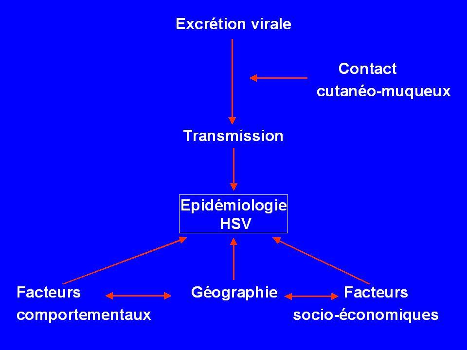 41 monogamous HSV2 serodiscordant couples –12 with man HSV2 + –29 with woman HSV2 + HSV2 seroincidence was: –20.7 seroconversions /100 PY in women –4.9 seroconversions /100 PY in men