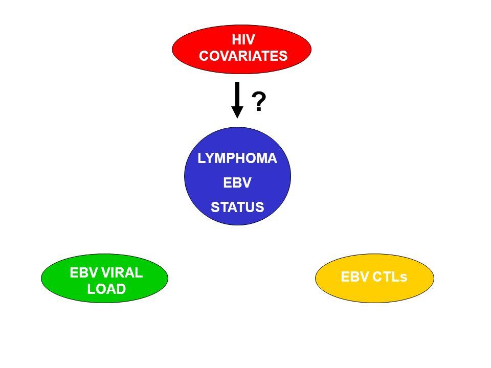 ? LYMPHOMA EBV STATUS HIV COVARIATES EBV CTLs EBV VIRAL LOAD