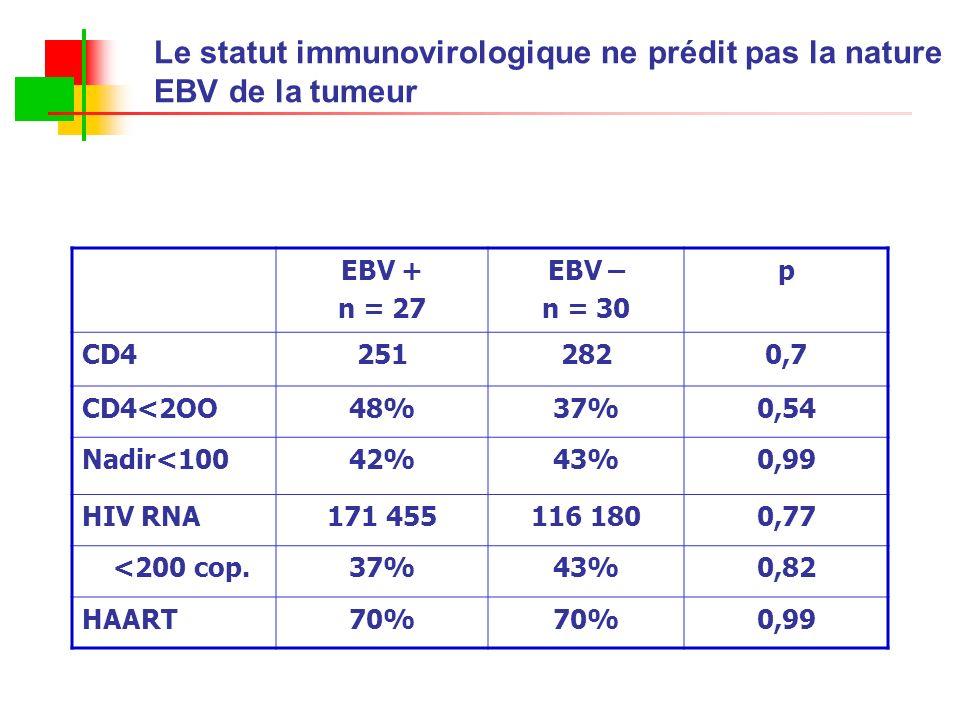 Le statut immunovirologique ne prédit pas la nature EBV de la tumeur EBV + n = 27 EBV – n = 30 p CD42512820,7 CD4<2OO48%37%0,54 Nadir<10042%43%0,99 HI