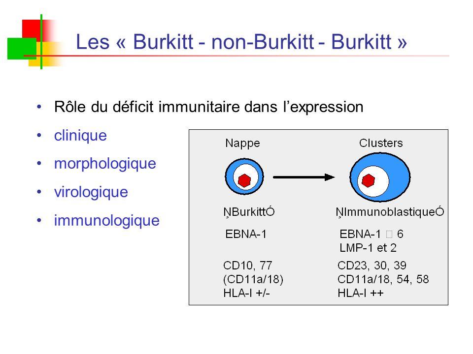 Les « Burkitt - non-Burkitt - Burkitt » Rôle du déficit immunitaire dans lexpression clinique morphologique virologique immunologique