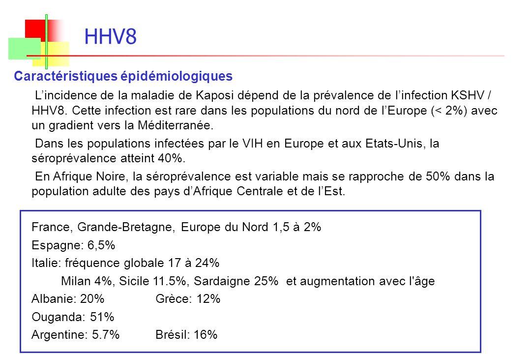 HHV8 Caractéristiques épidémiologiques Lincidence de la maladie de Kaposi dépend de la prévalence de linfection KSHV / HHV8. Cette infection est rare