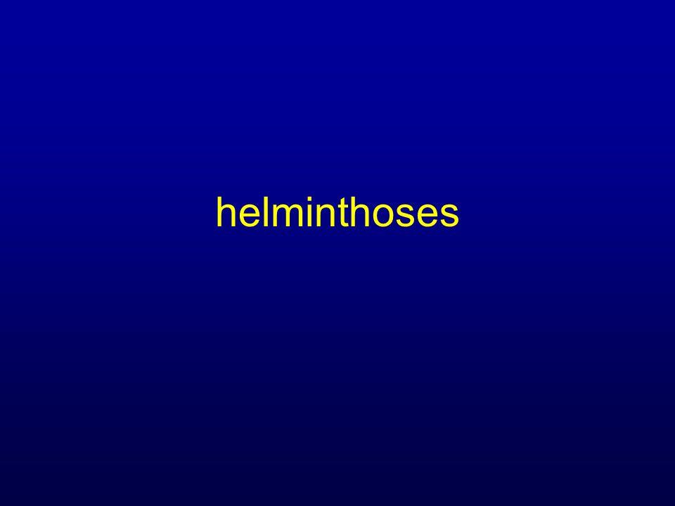 helminthoses
