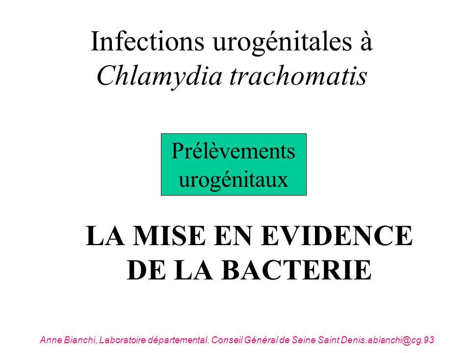 Infections urogénitales à Chlamydia trachomatis LA MISE EN EVIDENCE DE LA BACTERIE Prélèvements urogénitaux Anne Bianchi, Laboratoire départemental. C