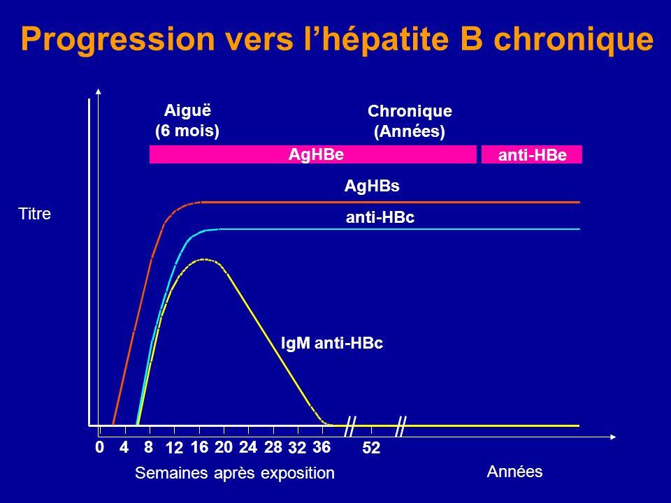 IgM anti-HBc anti-HBc AgHBs Aiguë (6 mois) AgHBe Chronique (Années) anti-HBe 048 12 16202428 32 36 52 Années Progression vers lhépatite B chronique Ti