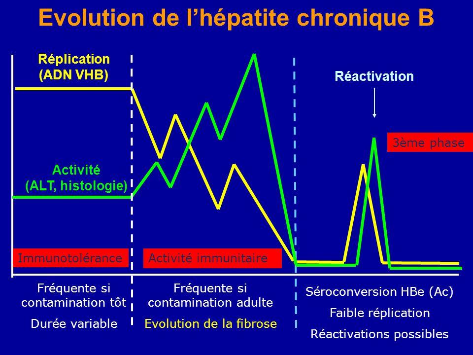 Evolution de lhépatite chronique B Réplication (ADN VHB) Activité (ALT, histologie) Réactivation Immunotolérance Fréquente si contamination tôt Durée