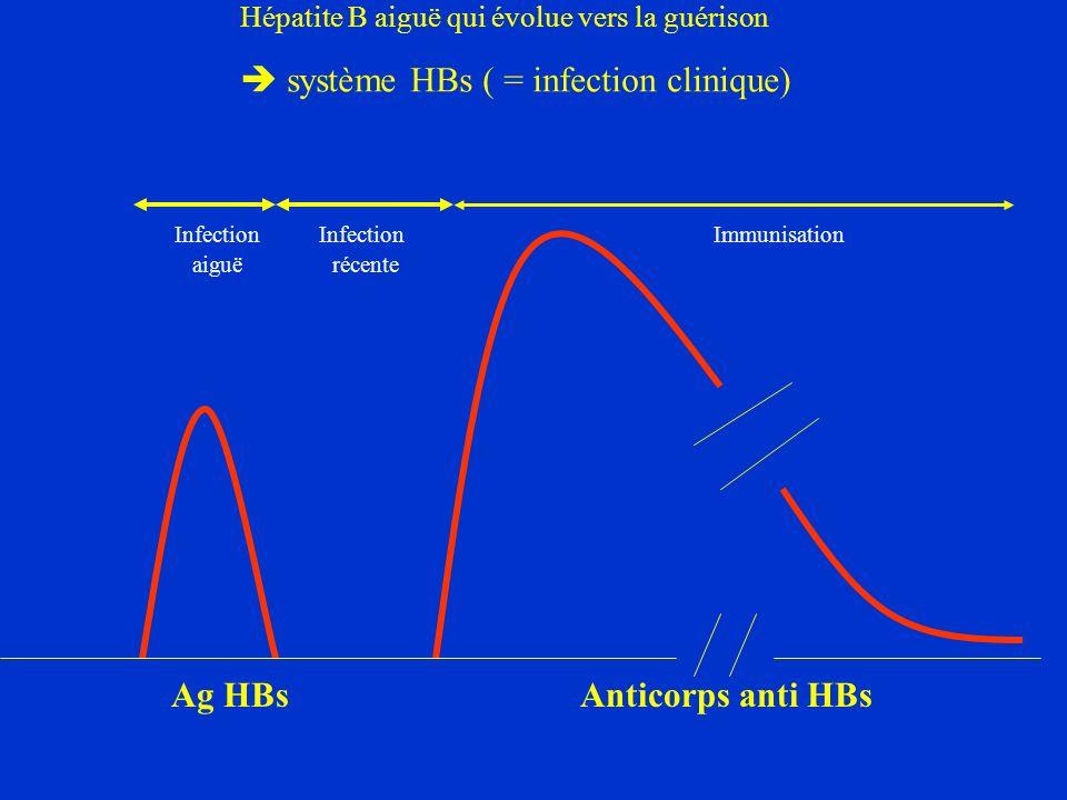 Infection Infection Immunisation aiguë récente Ag HBs Anticorps anti HBs Hépatite B aiguë qui évolue vers la guérison système HBs ( = infection clinique)