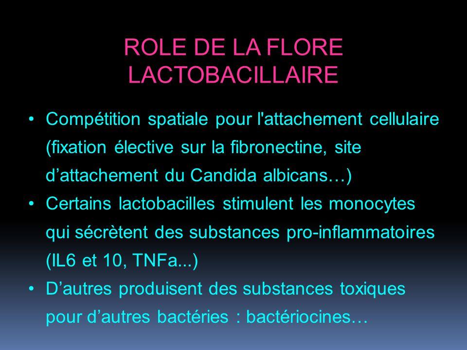 ROLE DE LA FLORE LACTOBACILLAIRE Compétition spatiale pour l'attachement cellulaire (fixation élective sur la fibronectine, site dattachement du Candi