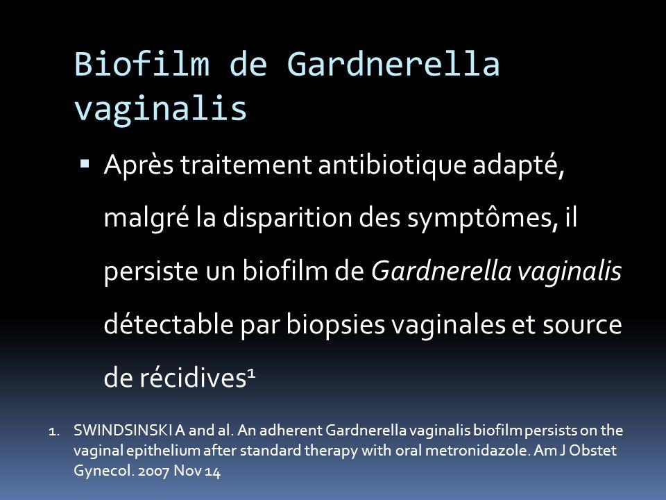 Biofilm de Gardnerella vaginalis Après traitement antibiotique adapté, malgré la disparition des symptômes, il persiste un biofilm de Gardnerella vagi