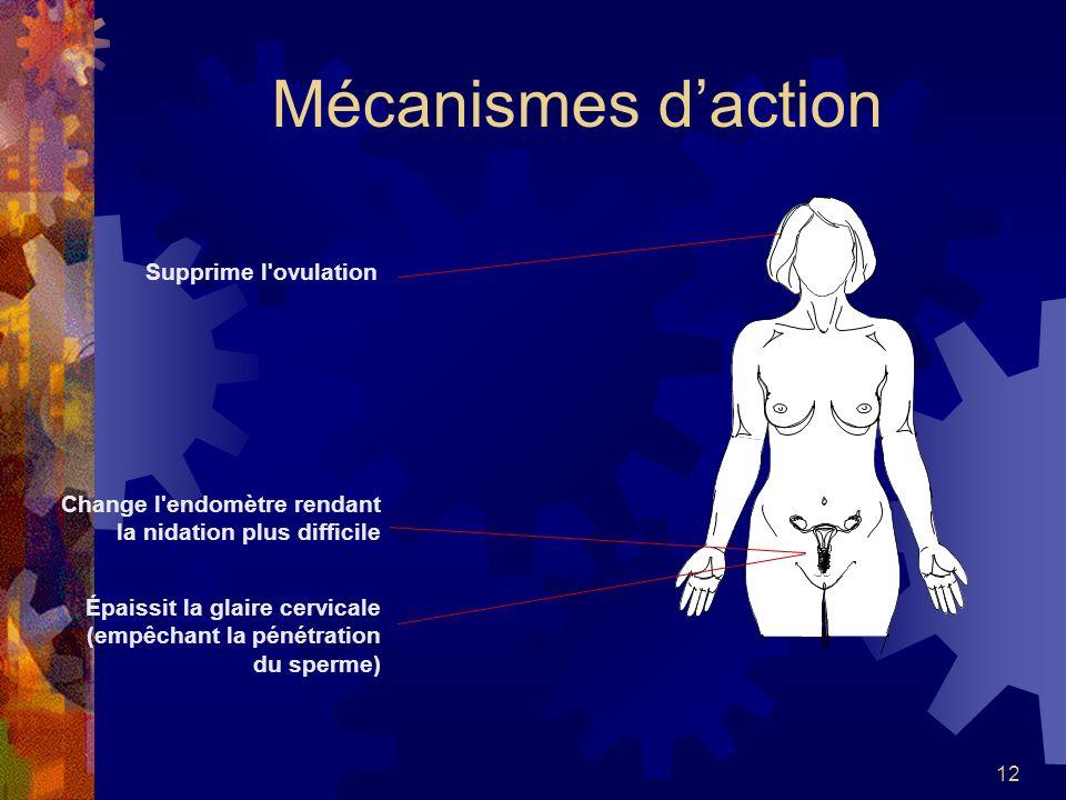12 Mécanismes daction Supprime l'ovulation Épaissit la glaire cervicale (empêchant la pénétration du sperme) Change l'endomètre rendant la nidation pl