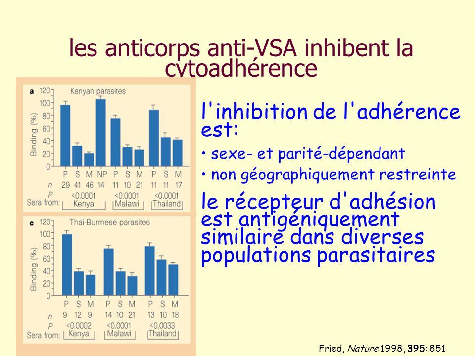 les anticorps anti-VSA inhibent la cytoadhérence Fried, Nature 1998, 395: 851 l'inhibition de l'adhérence est: sexe- et parité-dépendant non géographi