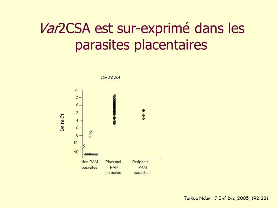 Var2CSA est sur-exprimé dans les parasites placentaires Tuikue Ndam, J Inf Dis, 2005, 192:331