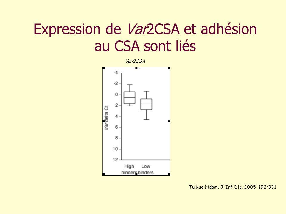 Expression de Var2CSA et adhésion au CSA sont liés Var2CSA Tuikue Ndam, J Inf Dis, 2005, 192:331