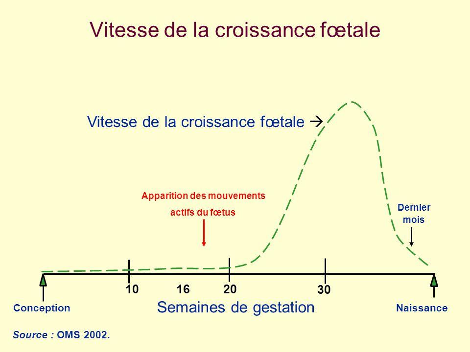 ConceptionNaissance 203010 Semaines de gestation 16 Vitesse de la croissance fœtale Apparition des mouvements actifs du fœtus Source : OMS 2002. Derni