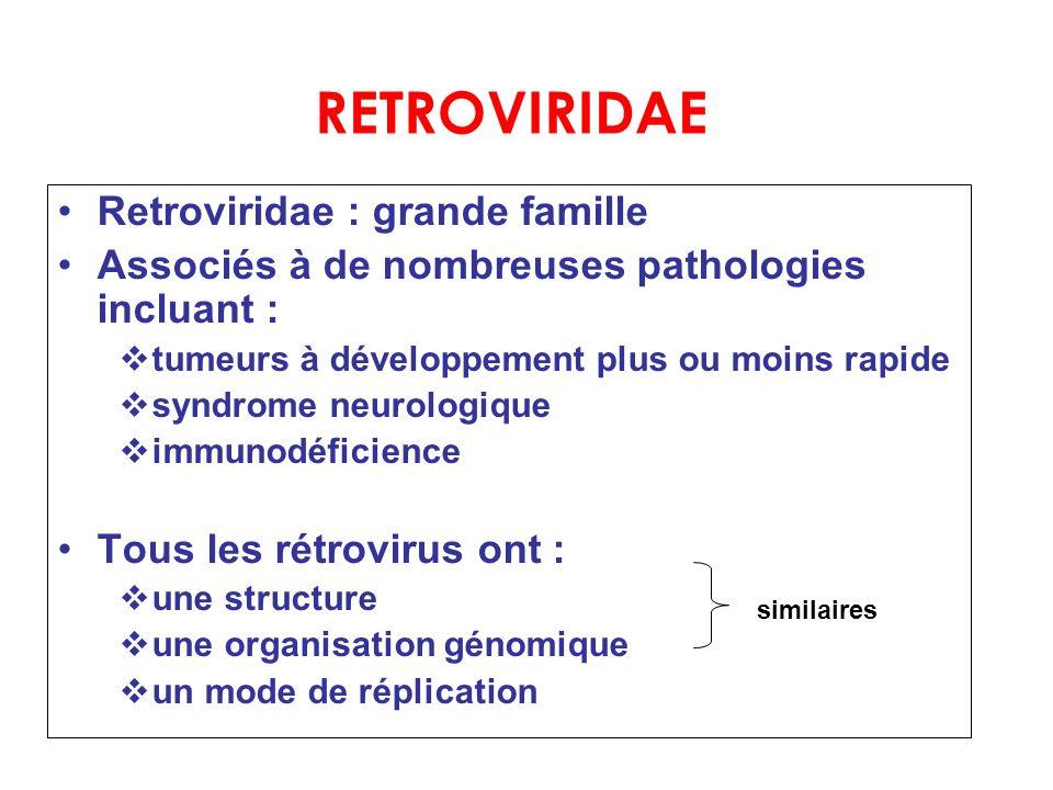 RETROVIRIDAE Retroviridae : grande famille Associés à de nombreuses pathologies incluant : vtumeurs à développement plus ou moins rapide vsyndrome neu