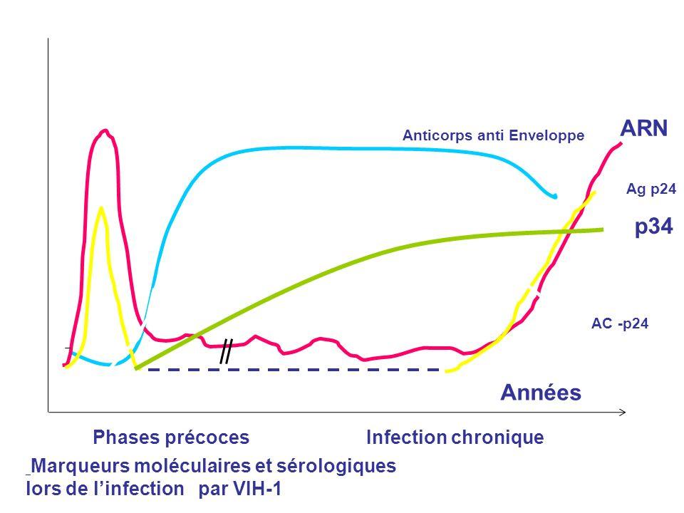Anticorps anti Enveloppe ARN Années Phases précocesInfection chronique Ag p24 AC -p24 p34 Marqueurs moléculaires et sérologiques lors de linfection pa