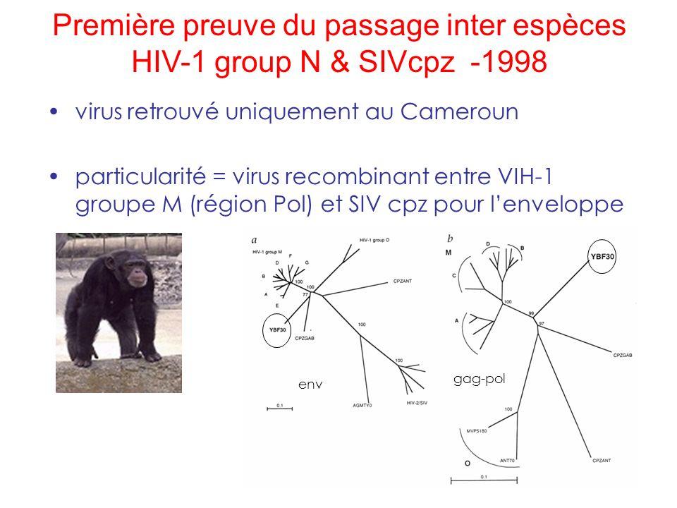 Première preuve du passage inter espèces HIV-1 group N & SIVcpz -1998 env gag-pol virus retrouvé uniquement au Cameroun particularité = virus recombin