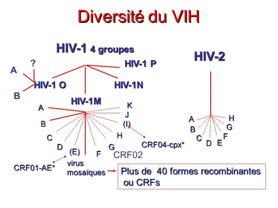 Anticorps anti Enveloppe ARN Années Phases précocesInfection chronique Ag p24 AC -p24 p34 Marqueurs moléculaires et sérologiques lors de linfection par VIH-1