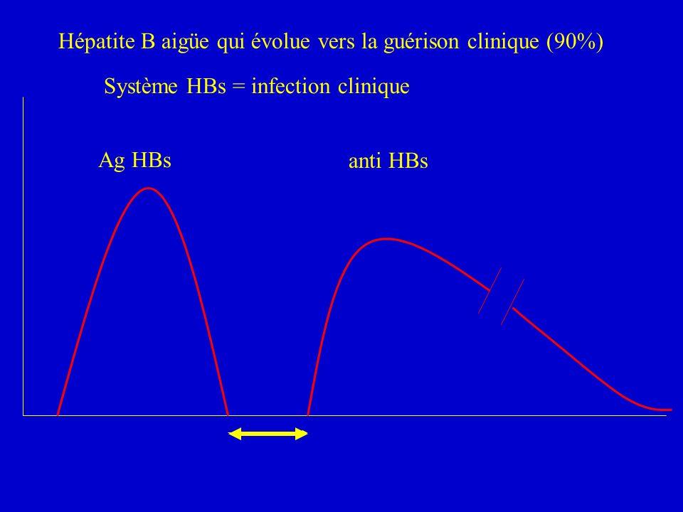 Ag HBs anti HBs Système HBs = infection clinique Hépatite B aigüe qui évolue vers la guérison clinique (90%)