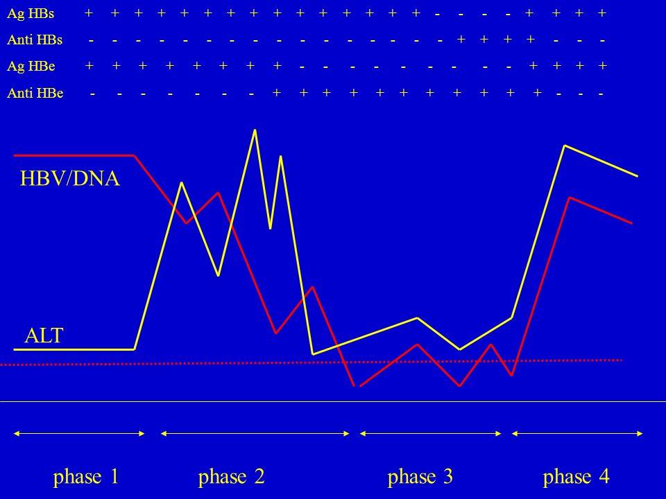phase 1 phase 2 phase 3 phase 4 Ag HBs + + + + + + + + + + + + + + + - - - - + + + + Anti HBs - - - - - - - - - - - - - - - - + + + + - - - Ag HBe + + + + + + + + - - - - - - - - - + + + + Anti HBe - - - - - - - + + + + + + + + + + + - - - HBV/DNA ALT