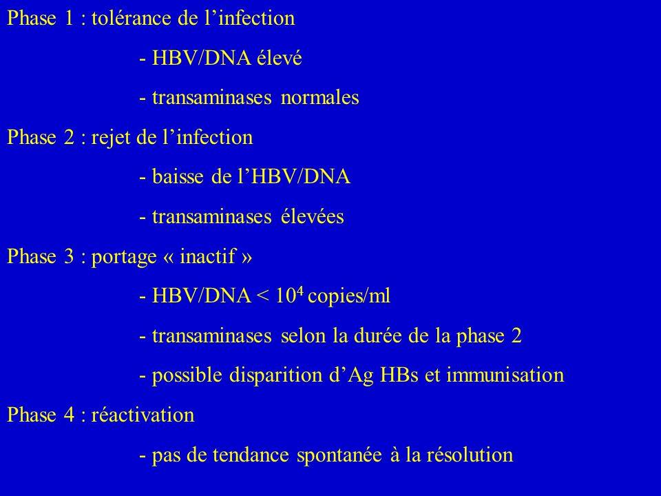 Phase 1 : tolérance de linfection - HBV/DNA élevé - transaminases normales Phase 2 : rejet de linfection - baisse de lHBV/DNA - transaminases élevées Phase 3 : portage « inactif » - HBV/DNA < 10 4 copies/ml - transaminases selon la durée de la phase 2 - possible disparition dAg HBs et immunisation Phase 4 : réactivation - pas de tendance spontanée à la résolution