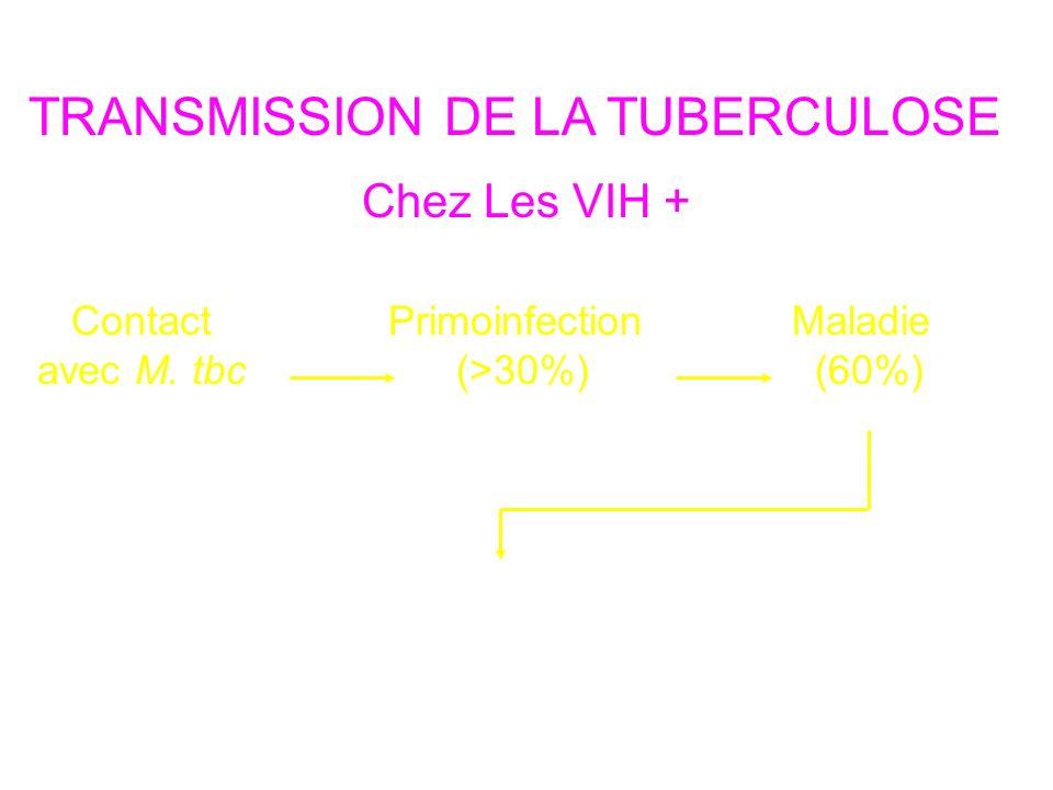 TRANSMISSION DE LA TUBERCULOSE Contact avec M. tbc Primoinfection (>30%) Maladie (60%) Moins de 20 primoinfections Chez Les VIH + Nouveaux contacts