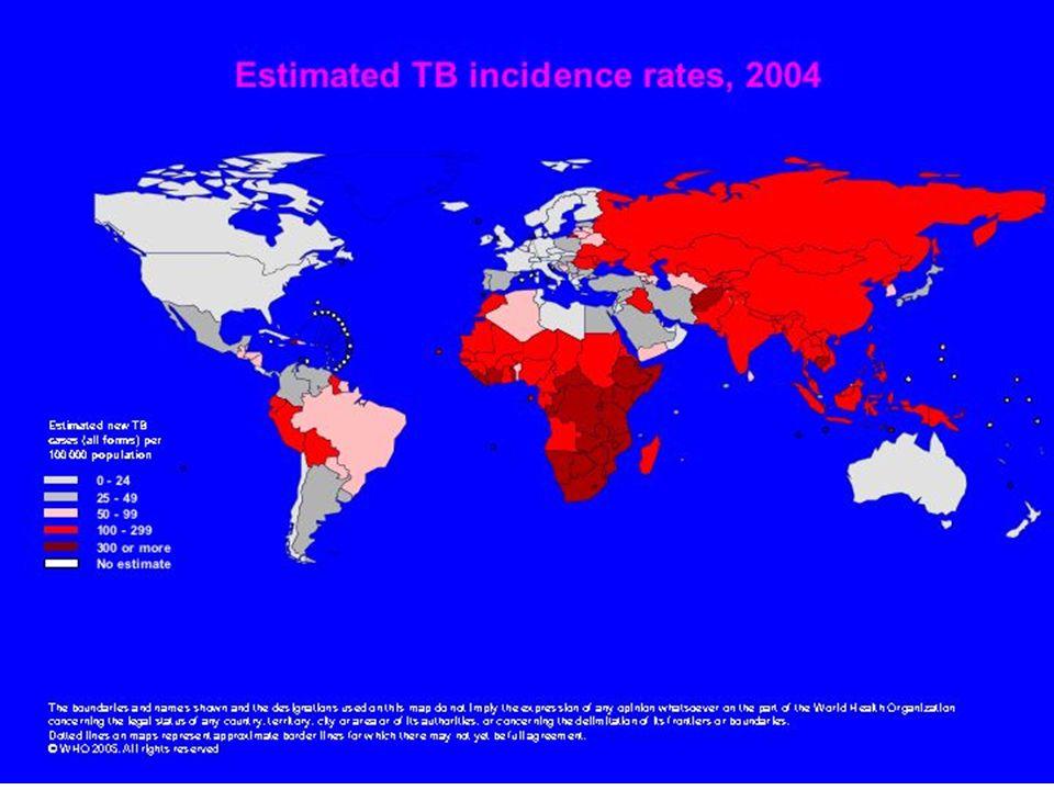 TUBERCULOSE EN 2006 Facile à diagnostiquer Traitement efficace Guérissable > 95% des cas Evitable avec chimioprophylaxie