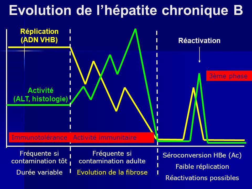 Evolution de lhépatite chronique B Réplication (ADN VHB) Activité (ALT, histologie) Réactivation Immunotolérance Fréquente si contamination tôt Durée variable Activité immunitaire Fréquente si contamination adulte Evolution de la fibrose 3ème phase Séroconversion HBe (Ac) Faible réplication Réactivations possibles