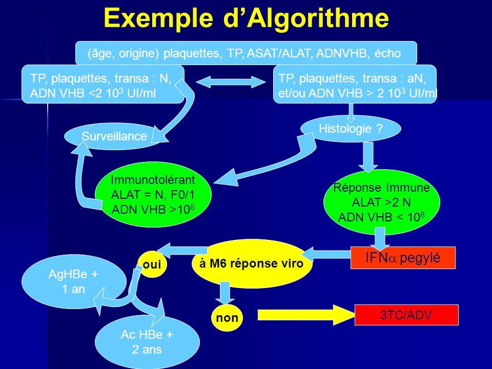 Exemple dAlgorithme IFN pegylé à M6 réponse viro oui non 3TC/ADV (âge, origine) plaquettes, TP, ASAT/ALAT, ADNVHB, écho TP, plaquettes, transa : N, ADN VHB <2 10 3 UI/ml TP, plaquettes, transa : aN, et/ou ADN VHB > 2 10 3 UI/ml Surveillance Histologie .