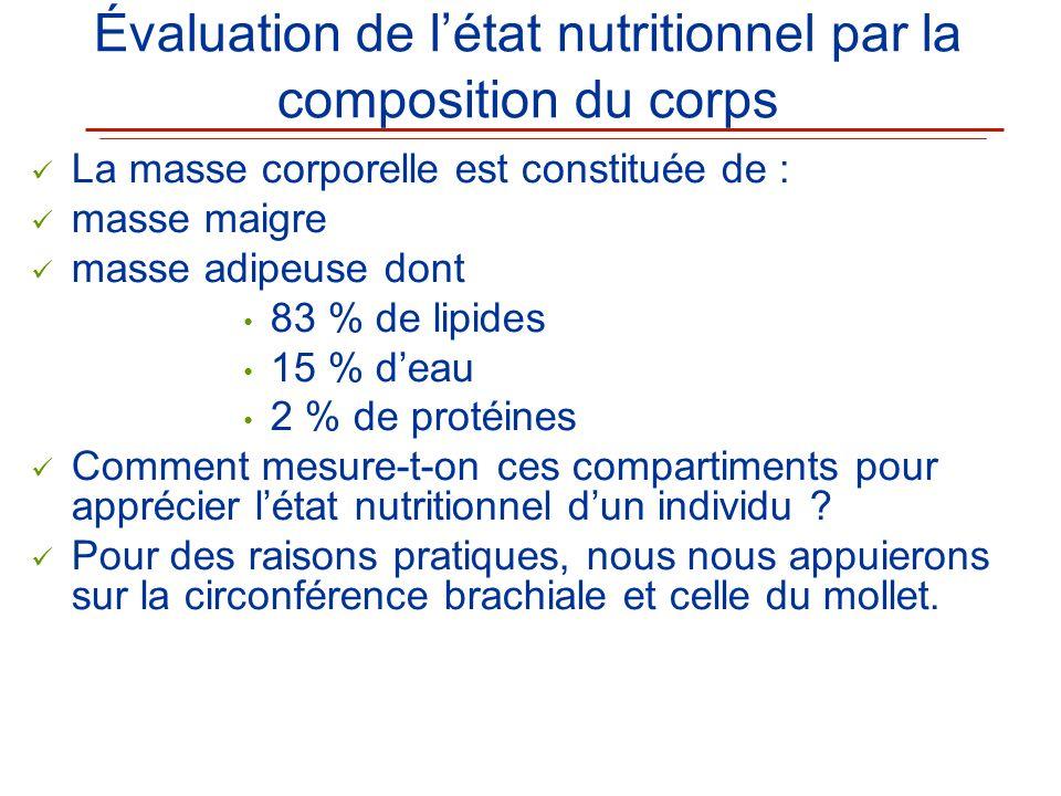 Évaluation de létat nutritionnel par la composition du corps La masse corporelle est constituée de : masse maigre masse adipeuse dont 83 % de lipides