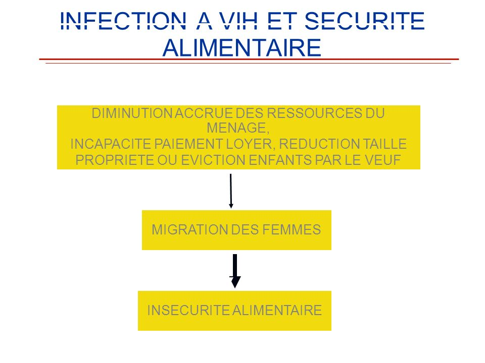 INFECTION A VIH ET SECURITE ALIMENTAIRE DIMINUTION ACCRUE DES RESSOURCES DU MENAGE, INCAPACITE PAIEMENT LOYER, REDUCTION TAILLE PROPRIETE OU EVICTION