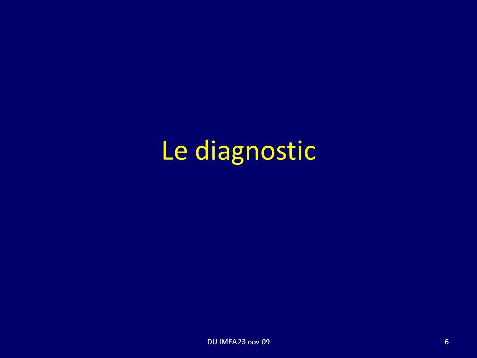 Le diagnostic DU IMEA 23 nov 096