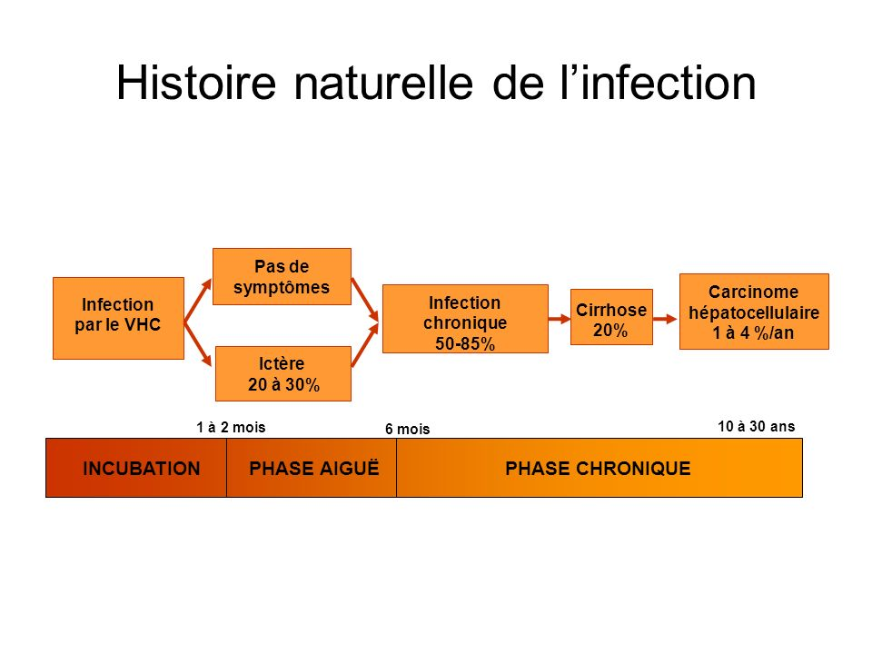 Histoire naturelle de linfection 6 mois 1 à 2 mois 10 à 30 ans INCUBATIONPHASE AIGUËPHASE CHRONIQUE Infection chronique 50-85% Cirrhose 20% Carcinome