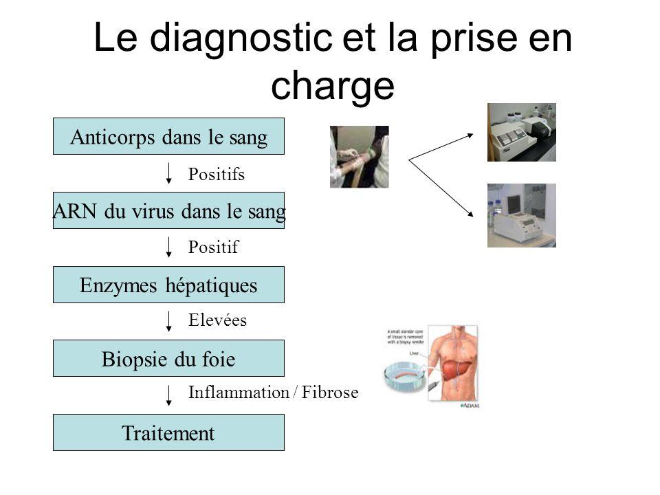 Le diagnostic et la prise en charge Anticorps dans le sang ARN du virus dans le sang Enzymes hépatiques Biopsie du foie Traitement Positifs Positif El