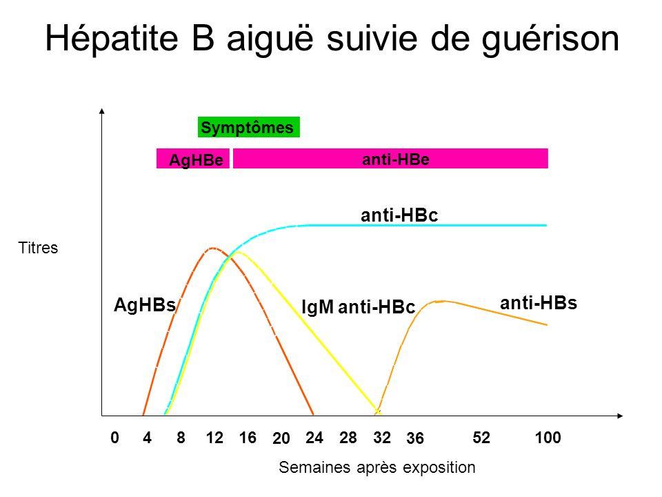 Symptômes AgHBe anti-HBe anti-HBc IgM anti-HBc anti-HBs AgHBs 0481216 20 242832 36 52100 Titres Semaines après exposition Hépatite B aiguë suivie de g
