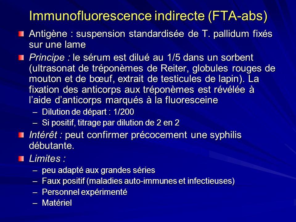 Immunofluorescence indirecte (FTA-abs) Antigène : suspension standardisée de T. pallidum fixés sur une lame Principe : le sérum est dilué au 1/5 dans