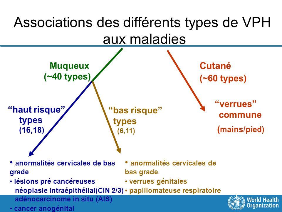 Associations des différents types de VPH aux maladies Cutané (~60 types) verrues commune ( mains/pied) Muqueux (~40 types) haut risque types (16,18) b