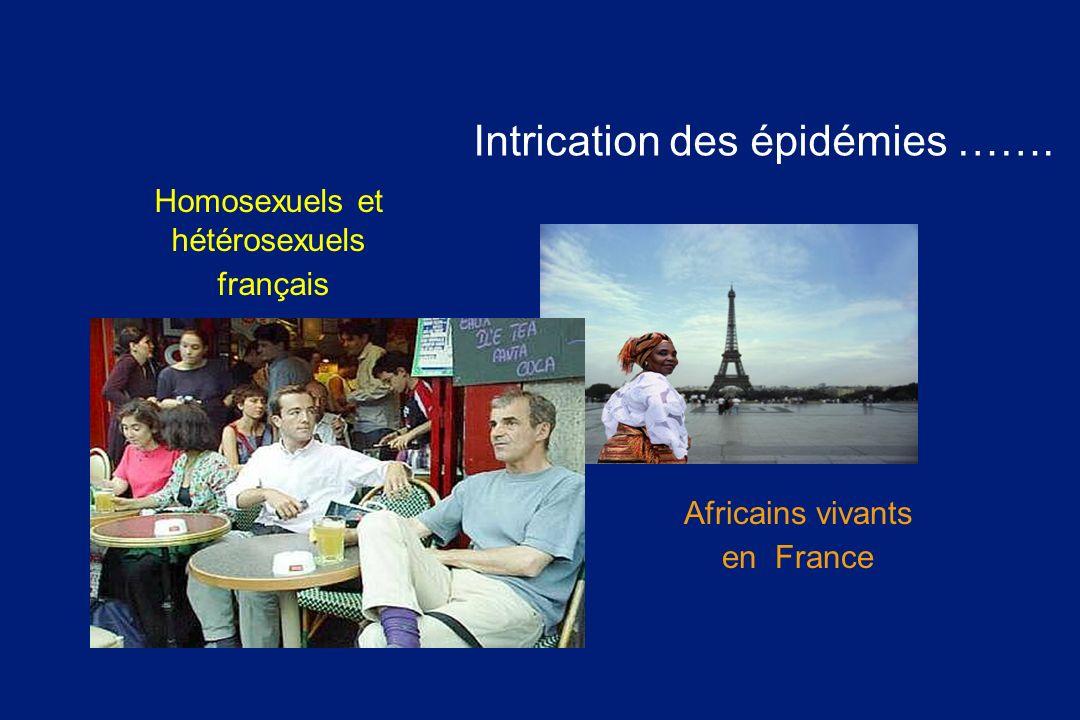 Homosexuels et hétérosexuels français Africains vivants en France Intrication des épidémies …….