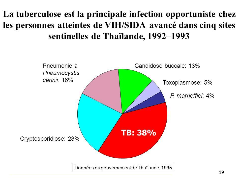 19 La tuberculose est la principale infection opportuniste chez les personnes atteintes de VIH/SIDA avancé dans cinq sites sentinelles de Thaïlande, 1992–1993 TB: 38% Données du gouvernement de Thaïlande, 1995 Cryptosporidiose: 23% P.