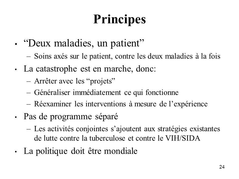 24 Principes Deux maladies, un patient –Soins axés sur le patient, contre les deux maladies à la fois La catastrophe est en marche, donc: –Arrêter ave