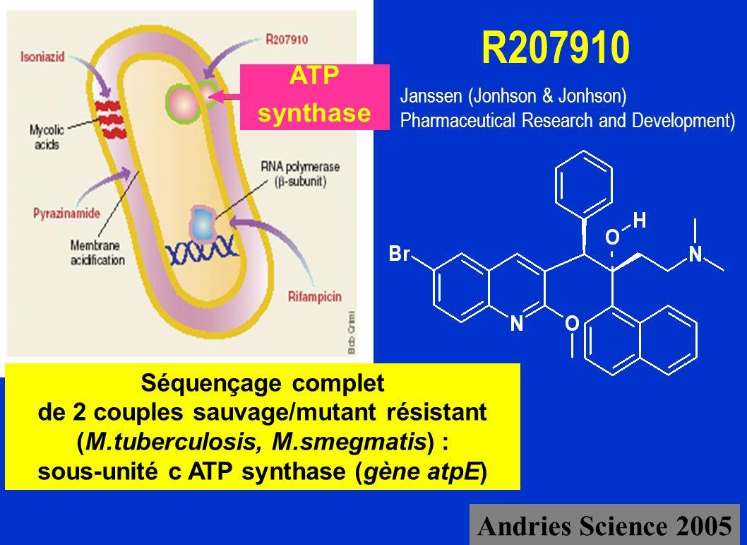 R207910 Séquençage complet de 2 couples sauvage/mutant résistant (M.tuberculosis, M.smegmatis) : sous-unité c ATP synthase (gène atpE) Janssen (Jonhso