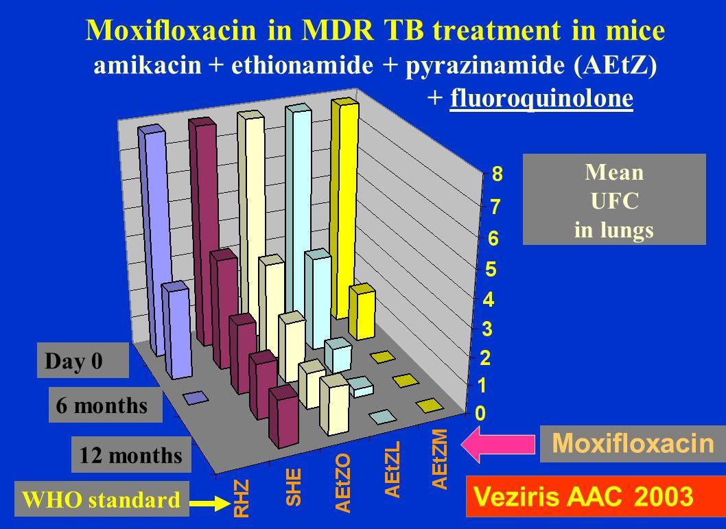 Moxifloxacin in MDR TB treatment in mice amikacin + ethionamide + pyrazinamide (AEtZ) + fluoroquinolone Veziris AAC 2003 Moxifloxacin 6 months 12 mont