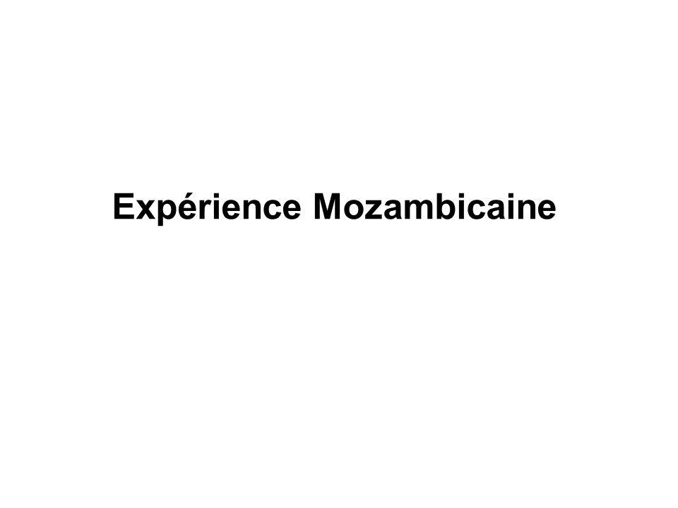 Expérience Mozambicaine