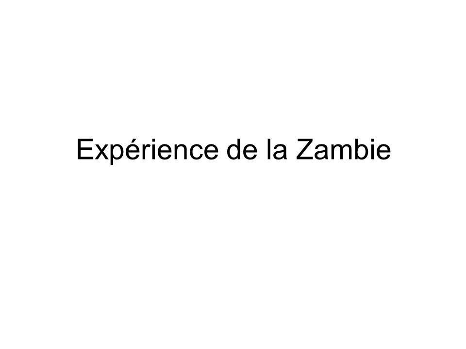 Expérience de la Zambie