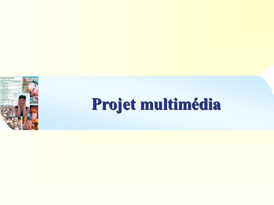 Idées envisagées : Faire un site internet à destination du grand public.