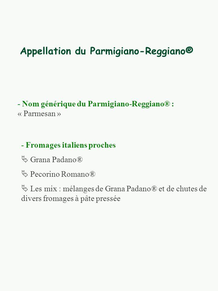 Appellation du Parmigiano-Reggiano® - Nom générique du Parmigiano-Reggiano® : « Parmesan » - Fromages italiens proches Grana Padano® Pecorino Romano® Les mix : mélanges de Grana Padano® et de chutes de divers fromages à pâte pressée