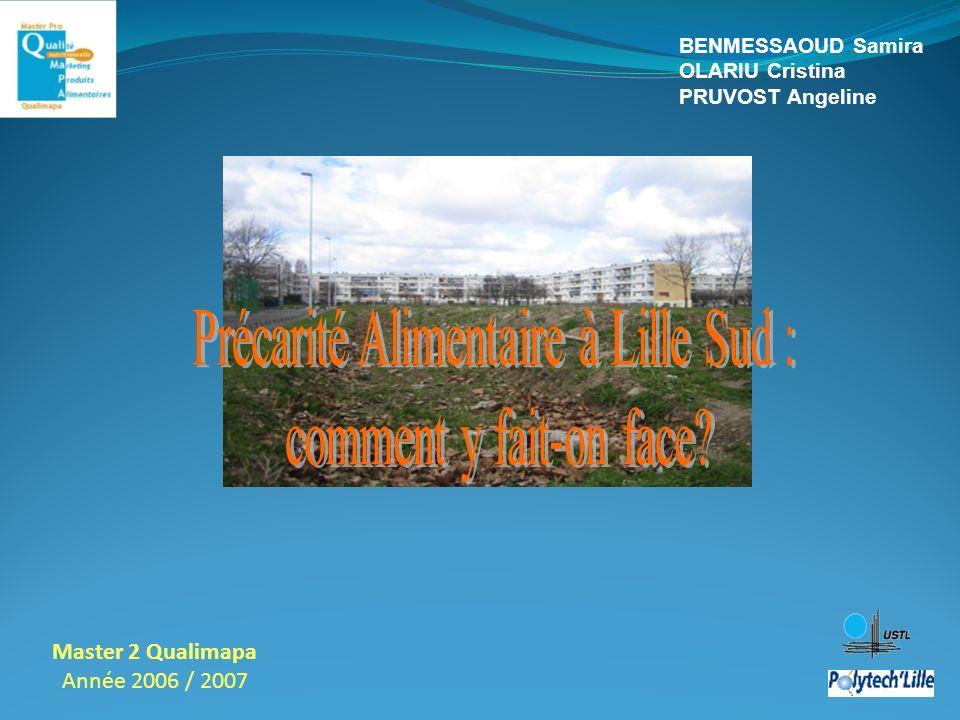 Master 2 Qualimapa Année 2006 / 2007 BENMESSAOUD Samira OLARIU Cristina PRUVOST Angeline