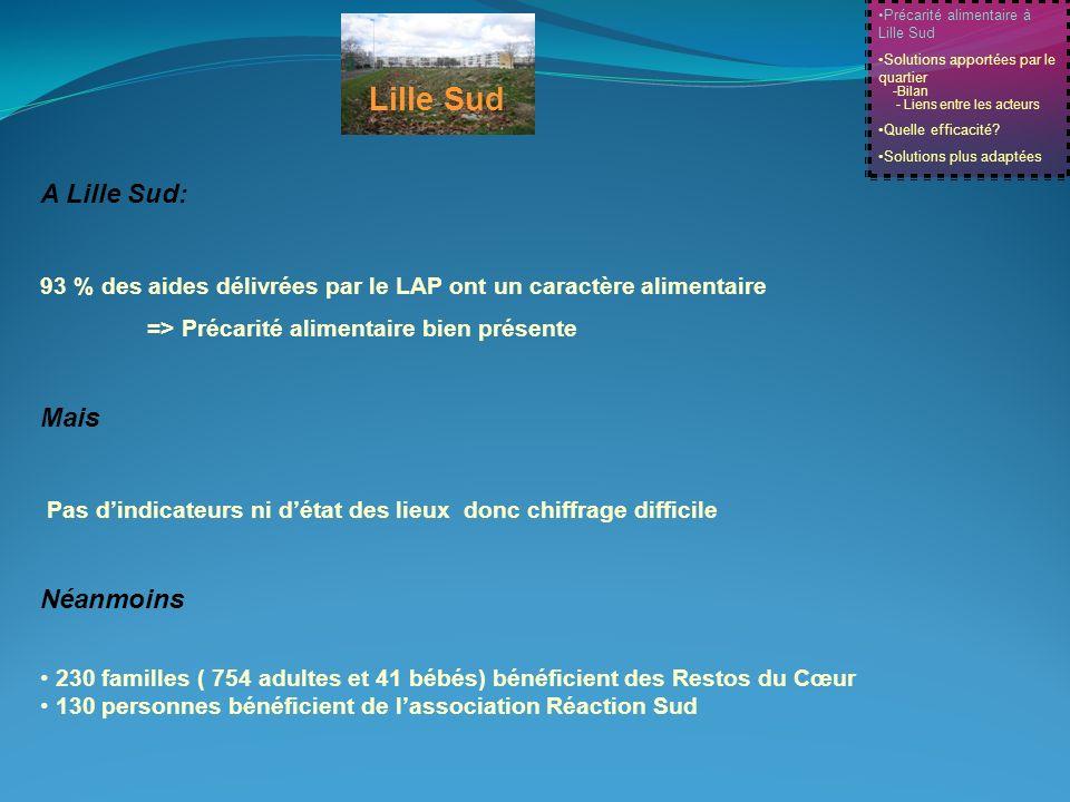 Lille Sud A Lille Sud: 93 % des aides délivrées par le LAP ont un caractère alimentaire => Précarité alimentaire bien présente Mais Pas dindicateurs n