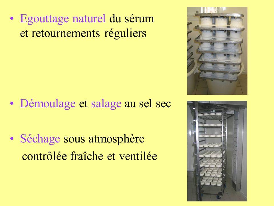 Egouttage naturel du sérum et retournements réguliers Démoulage et salage au sel sec Séchage sous atmosphère contrôlée fraîche et ventilée
