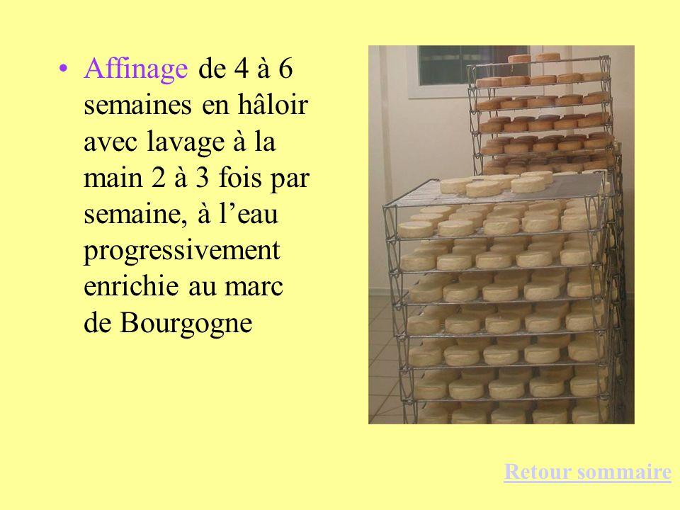 Affinage de 4 à 6 semaines en hâloir avec lavage à la main 2 à 3 fois par semaine, à leau progressivement enrichie au marc de Bourgogne Retour sommair